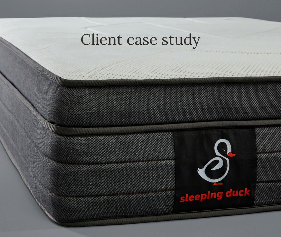 Sleeping Duck Blog content case study